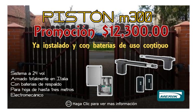 Piston m300