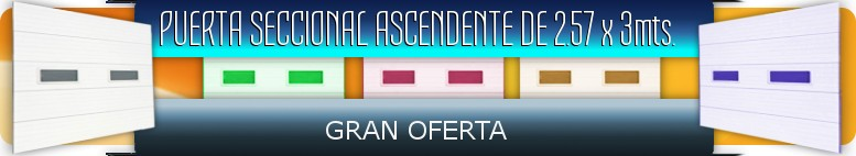 Ascending Sectional Door Offer